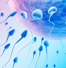 insemination artificielle tunisie